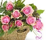 粉色玫瑰花图片唯美背景素材