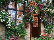 浪漫清新的欧式花店装修效果图