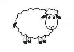 卡通绵羊简笔画图片