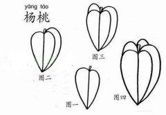 小学生杨桃简笔画画法图解:怎么画杨桃