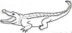张大嘴的鳄鱼简笔画图片