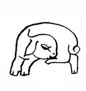 睡觉的羊简笔画
