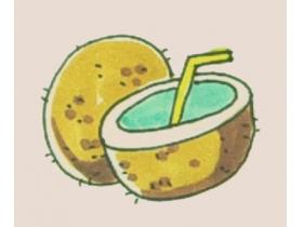 椰子简笔画