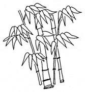 儿童竹子简笔画图片