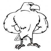 卡通老鹰简笔画图片:强壮的老鹰
