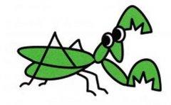 带颜色的螳螂简笔画图片