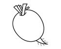 萝卜简笔画的画法步骤