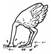 低头埋进土里的鸵鸟简笔画图片