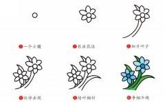 兰花简笔画画法步骤图片:怎么画兰花