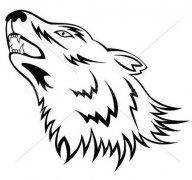 狼图腾简笔画图片