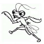 儿童卡通螳螂简笔画图片:奔跑的螳螂