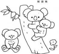 儿童树袋熊一家简笔画图片大全