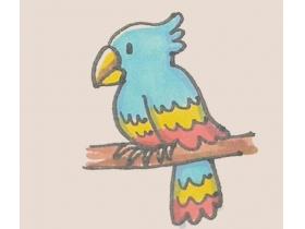 如何画鹦鹉简笔画