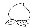 水蜜桃简笔画绘画步骤和图片