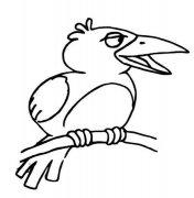 树枝上的乌鸦简笔画图片