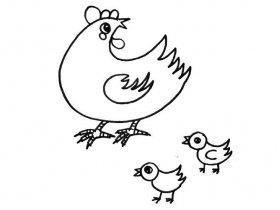 母鸡带着两只小鸡简笔画