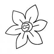 兰花花朵简笔画图片