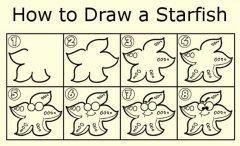 海星简笔画画法教程:如何画海星