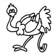 可爱卡通鸵鸟简笔画图片