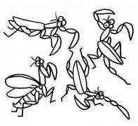 各种体态的螳螂简笔画图片大全