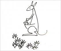 袋鼠怎样画
