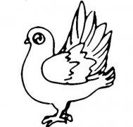 幼儿关于广场上站着的鸽子简笔画图片