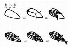 关于老玉米简笔画画法教程