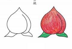 彩色桃子简笔画图片大全