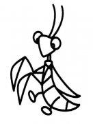 幼儿园螳螂简笔画图片