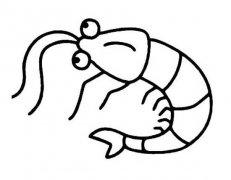 小学生河虾简笔画图片
