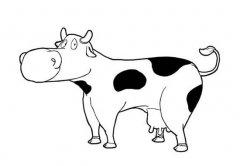 可爱的奶牛简笔画