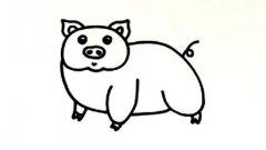 幼儿简笔画猪