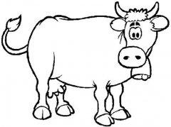 儿童关于牛的简笔画