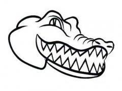 鳄鱼头部简笔画图片