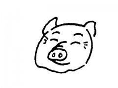 猪头简笔画图片