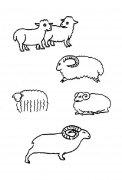 各种羊的简笔画大全
