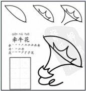如何画牵牛花的简笔画画法教程
