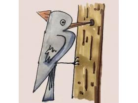 啄木鸟简笔画