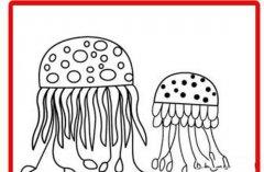 箱型水母简笔画图片