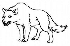 儿童关于狼的简笔画图片