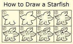 如何画海星
