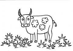 关于水牛的简笔画图片