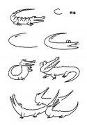 各种体态的鳄鱼简笔画图片大全
