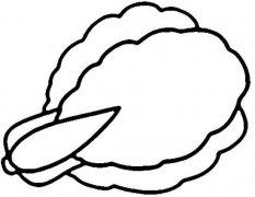关于大白菜的简笔画图片