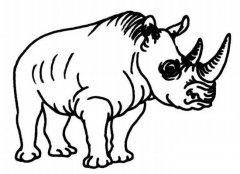 强壮的黑犀牛简笔画图片大全