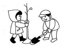 植树节主题简笔画:植树的男孩与女孩