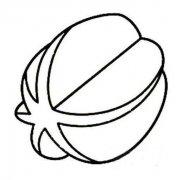 小学生水果简笔画图片:杨桃