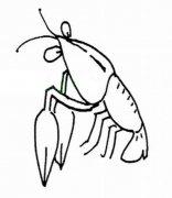 少儿小龙虾简笔画图片