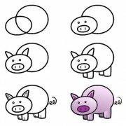 猪的简笔画教程步骤图片:怎么画小猪