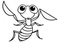 儿童可爱小螳螂简笔画图片